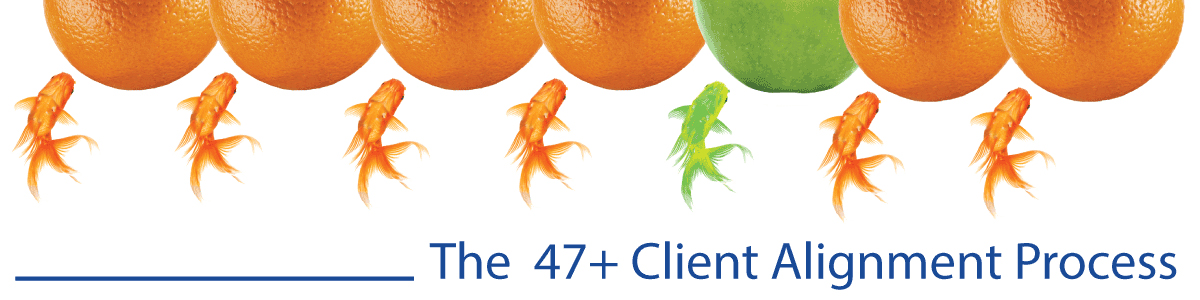 The 47+ Client Alignment Process